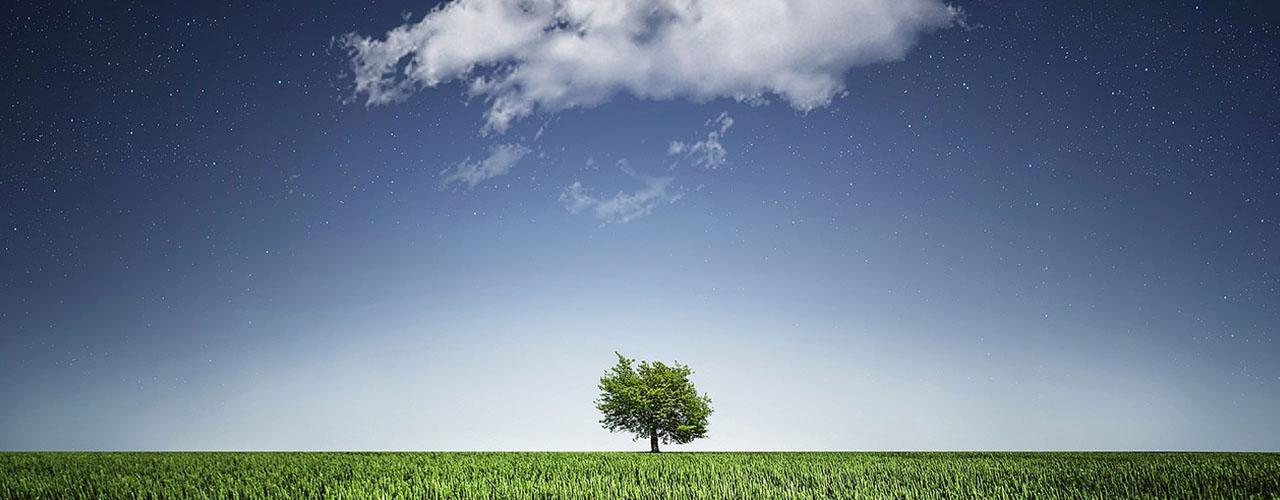Vpliv na klimatske spremembe pri nas