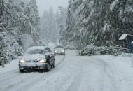 sneg-ceste